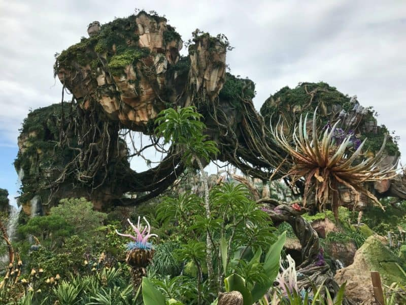 Read 3 reasons why you are going to want to bring your family to see Pandora the World of Avatar