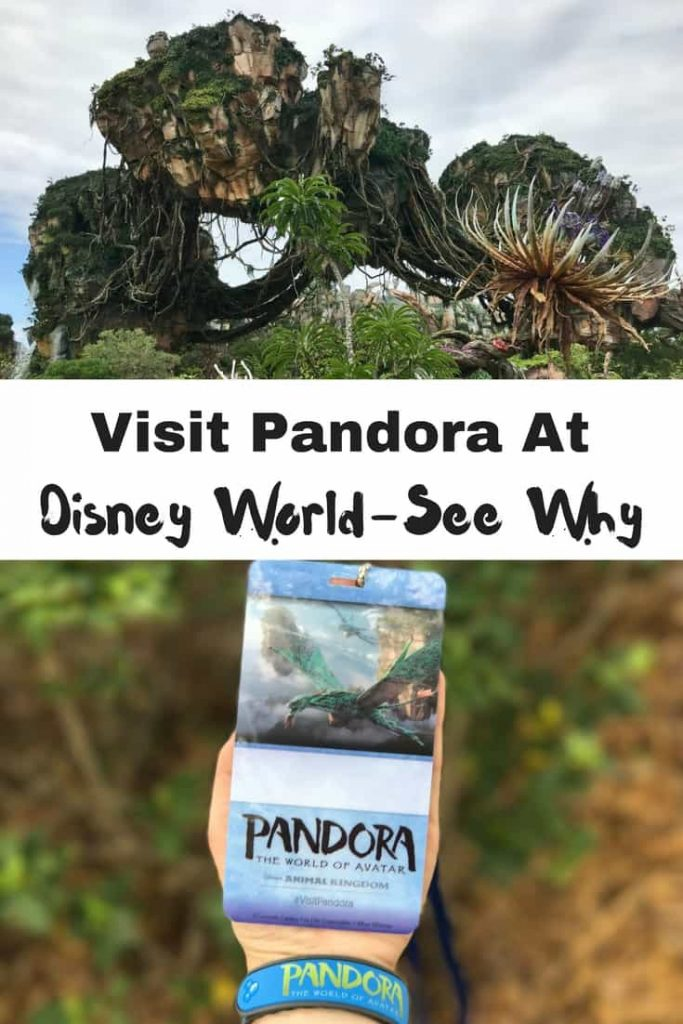 We share 3 reasons why you should visit Pandora the World of Avatar.