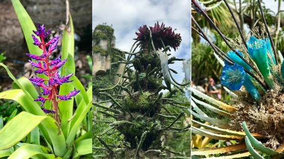 The incredible sights around Pandora will inspire and captivate you!