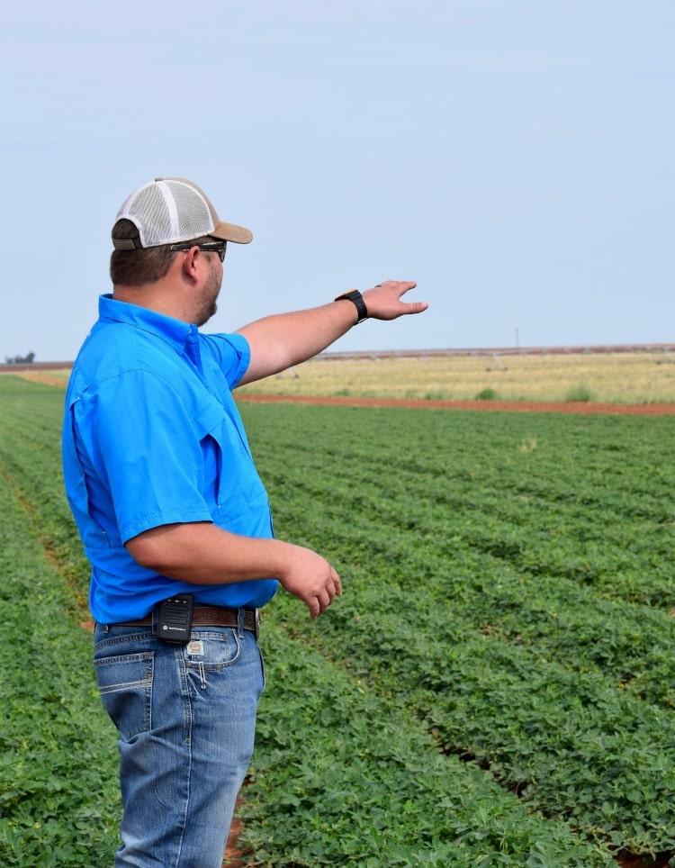 Texas peanut farmers showing us the peanut fields