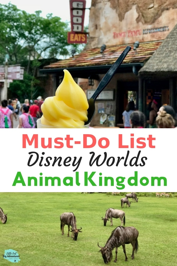 A list of things you won't want to miss at Disney Worlds Animal Kingdom. Use this list to plan your visit to Animal Kingdom and make the most of your time in the park. #disneyworld #animalkingdom #waltdisneyworld #disneytips